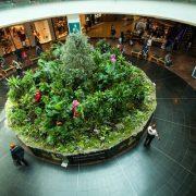 Floria şi proiectul spectaculos pentru Băneasa Shopping City