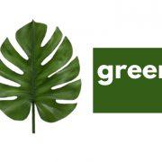 Green, green stuff I use