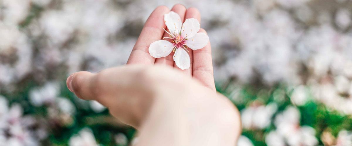 Cinci propuneri Nivea pentru o cremă de mâini bună