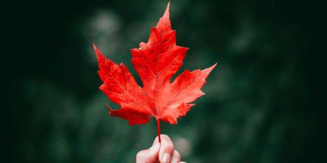 jessica autumn romance