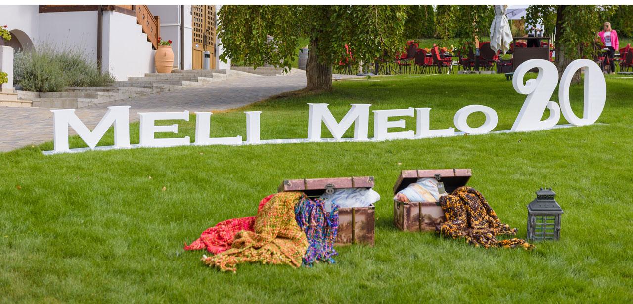 Cum a fost la petrecerea de 20 ani a Meli Melo