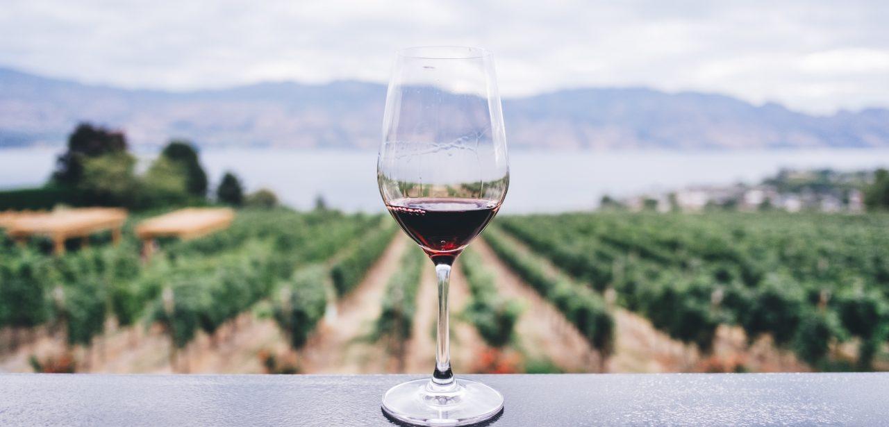 Povestea primului sărut și un pahar cu vin Moștenirea, în ediție limitată