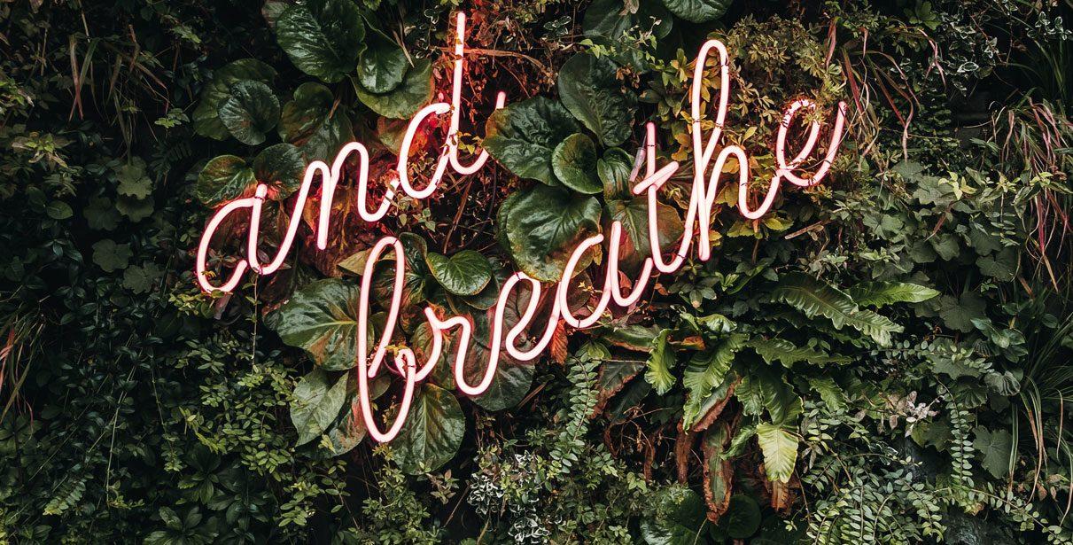 Care-i legătura dintre respirație și o dantură frumoasă?